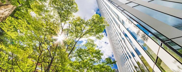 Construyendo un negocio sostenible